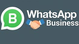 whatsapp business como usar